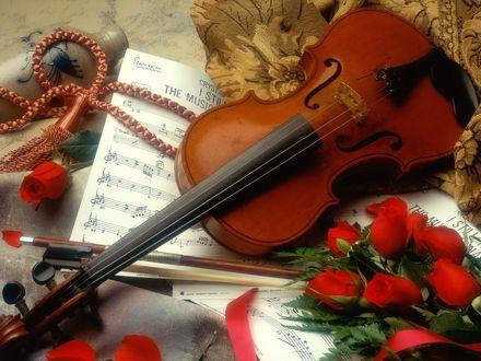 Обои Скрипка лежит среди роз и нот