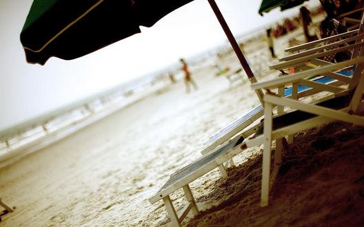 Обои Шезлонги и зонты стоят на песке на пляже