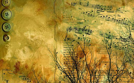 Обои Музыкальная абстракция: старые пуговицы, ноты, печатный текст, голые ветки деревьев с сидящими на них чёрными птицами
