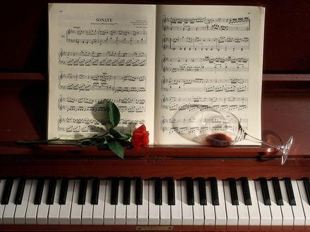 Обои Музыкальные ноты, роза и бокал с недопитым вином лежат на пианино