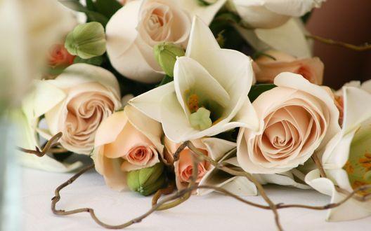 Обои Букет из роз и лилий