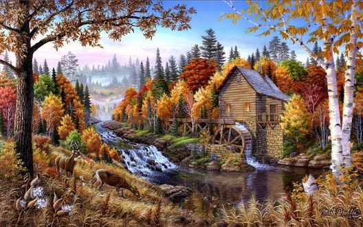 Обои Водяная мельница в тихой лесной местности, на берегу быстрой реки спокойно пасутся олени