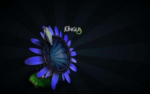 Обои Патефон с рупором в форме цветка и сидящей на нем птицей (AUDIO JUGLE)