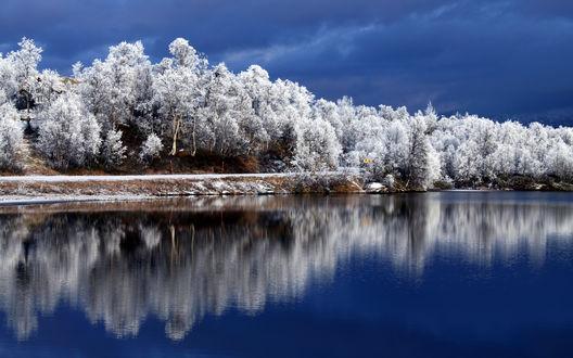 Обои Красивый зимний лес и река, протекающая рядом