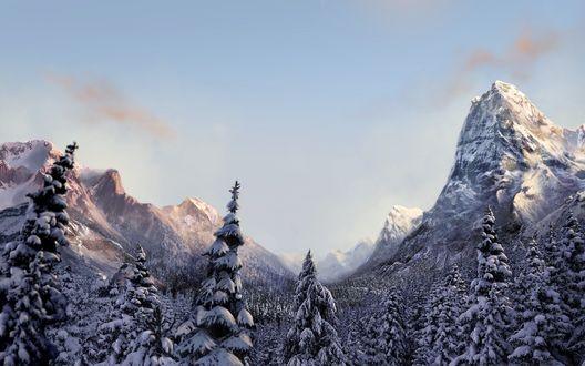 Обои Горы и лес