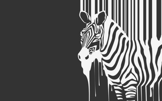Обои Полосы стекающие сверху превращаются в зебру