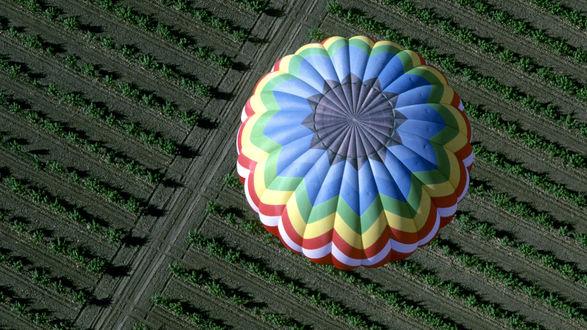 Обои Цветной воздушный шар пролетает над полями