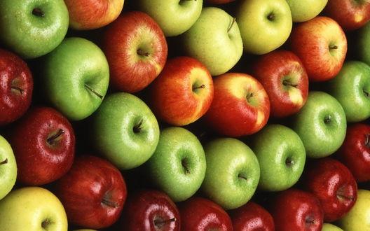 Обои Спелые и красивые яблоки, фрукты выложены в ряды по сортам