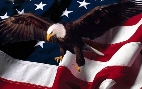 обои американский флаг