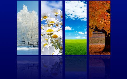 Обои Иконки времен года: Зима, Весна, Лето, Осень