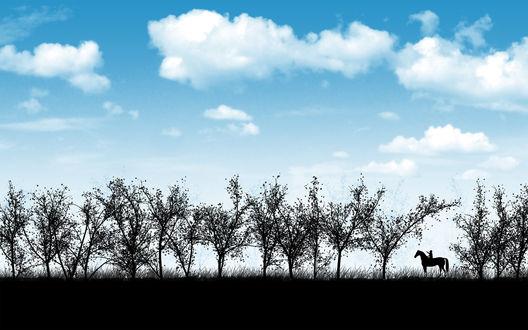 Обои Ребенок катается на лошади по полю, по краю которого растут молодые деревья