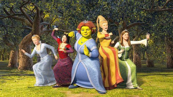 Обои Атака принцесс, мультфильм Шрек / Shrek