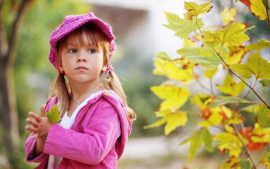 Обои Девочка в розовой беретке с осенними листьями