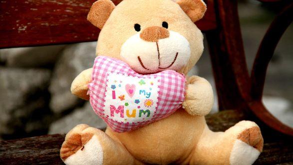 Обои На скамейке сидит мягкая игрушка в виде плюшевого медведя с клетчатым сердцем в лапах (I love my Mum / Я люблю мою маму)