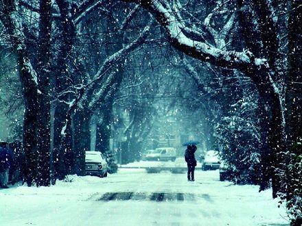 Обои Фото зимнего города, под падающим снегом целуется парочка, спрятавшаяся под зонтом