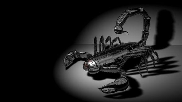 Обои Киборг - скорпион