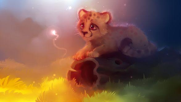 Обои Маленький гепард сидит на бревне и смотрит на волшебную искорку