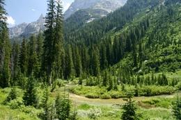 Обои каскад каньон чуть выше форкс