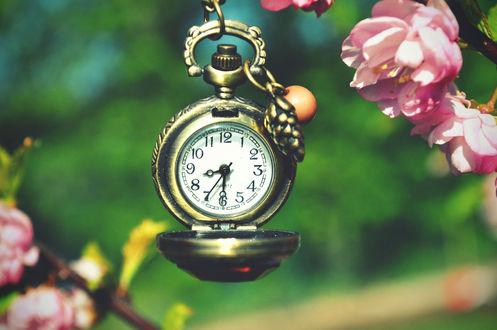Обои Часы и розовые цветы