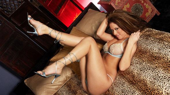 Обои Cassia Riley / Кэссия Рилей в нижнем белье лежит на леопардовом диване