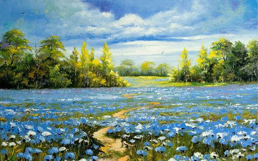 Обои Поле голубых цветов