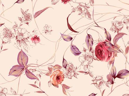 Обои Узор из цветков роз на нежно-розовом фоне