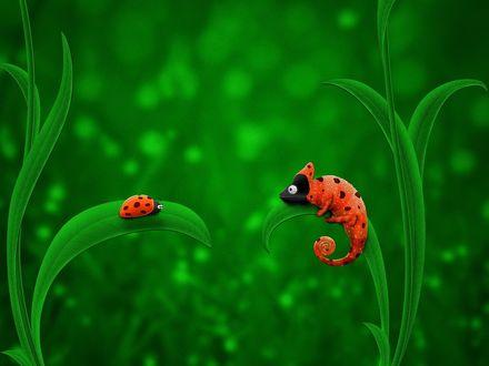 Обои Божья коровка и геккон сидят на траве напротив друг друга