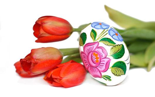 Обои Красные тюльпаны с пасхальным яйцом