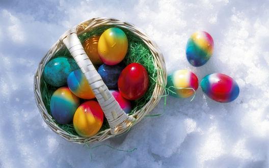 Обои Разноцветные яйца лежат в корзинке и на снегу