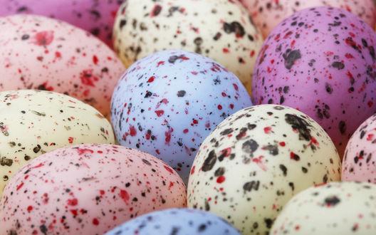 Обои Пестрые псхальные яйца