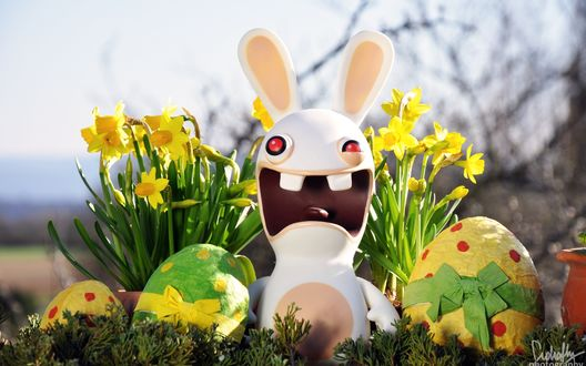 Обои Фигурка кролика из игры Rayman Raving Rabbits рядом с пасхальными яйцами и нарциссами, Пасха современным взглядом (Ciphatly photography)