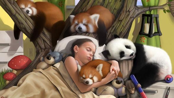 Обои Спящие девочка и животные