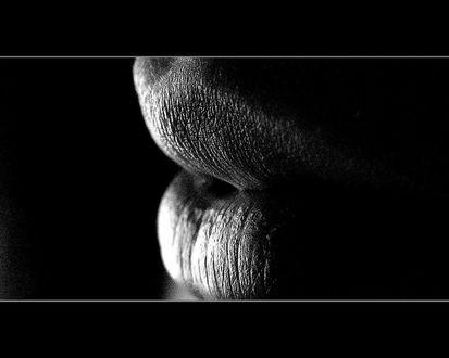 Обои Женские губы