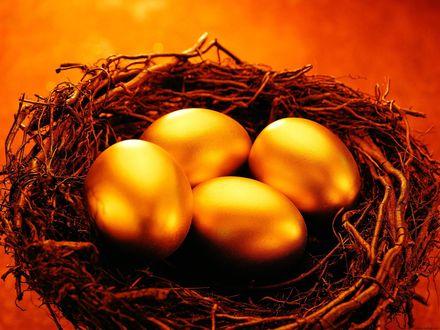 Обои Золотые пасхальные яйца в гнезде