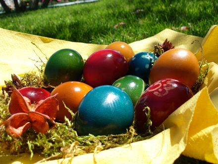 Обои Цветные крашенные яйца лежат на желтой ткани