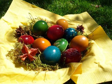 Обои Пасхальные яйца на желтой материи на траве