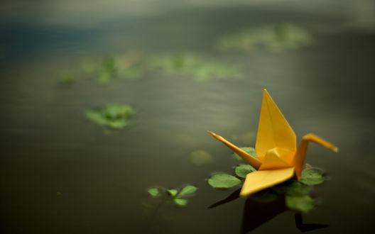Обои Оригами, желтый бумажный журавлик плывет по воде