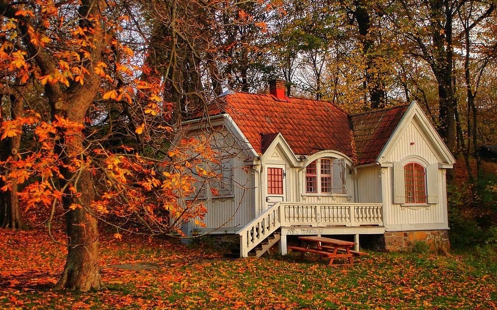 Обои для рабочего стола Заброшенный домик в осеннем лесу