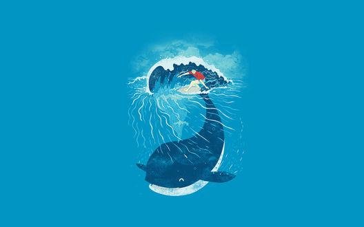 Обои Синий кит создает волну для серфингиста на доске