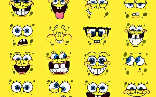 Обои Губка Боб и его множество эмоций, смешной Sponge Bob / Спанч боб