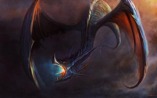 Обои Дракон с открытой пастью парит в небесах