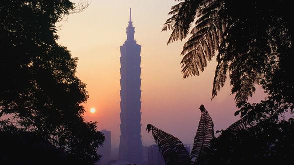 Обои Вид на Taipei 101 / Тайпей 101 с горы, Тайвань / Taiwan