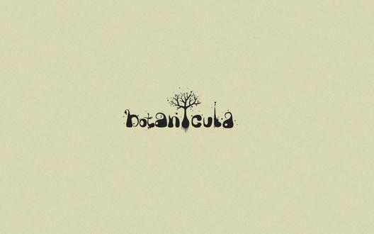 Обои Компьютерная игра botanicula