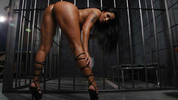 Девушки в тюрьме голые фото