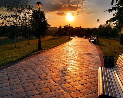 Обои Парк на закате