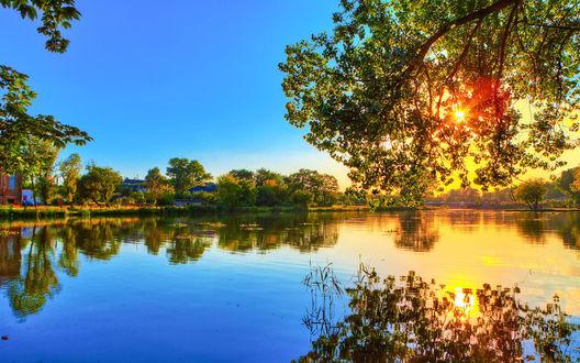 Обои Река предрассветным утром. Сквозь крону дерева пробиваются солнечные лучи