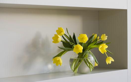 Обои Ваза с желтыми тюльпанами