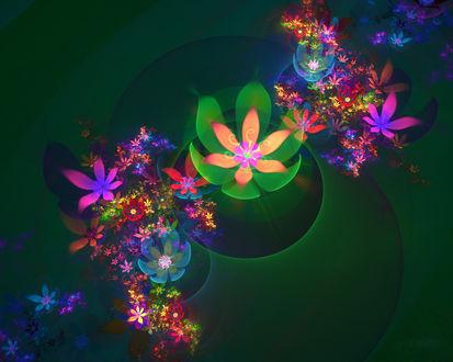 Обои Яркие фрактальные цветы