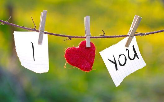 Обои Признание в любви, прикрепленное к веточке (I  love you / Я люблю тебя)