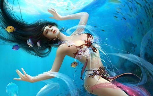 Обои Девушка плавает под водой в окружении рыб